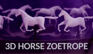 3D Horse Zoetrope